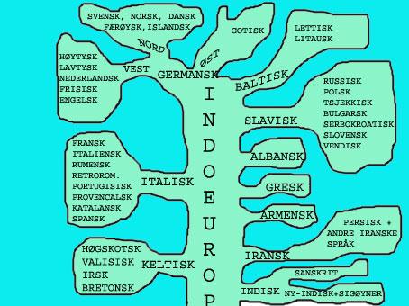 Hva er norrønt språk